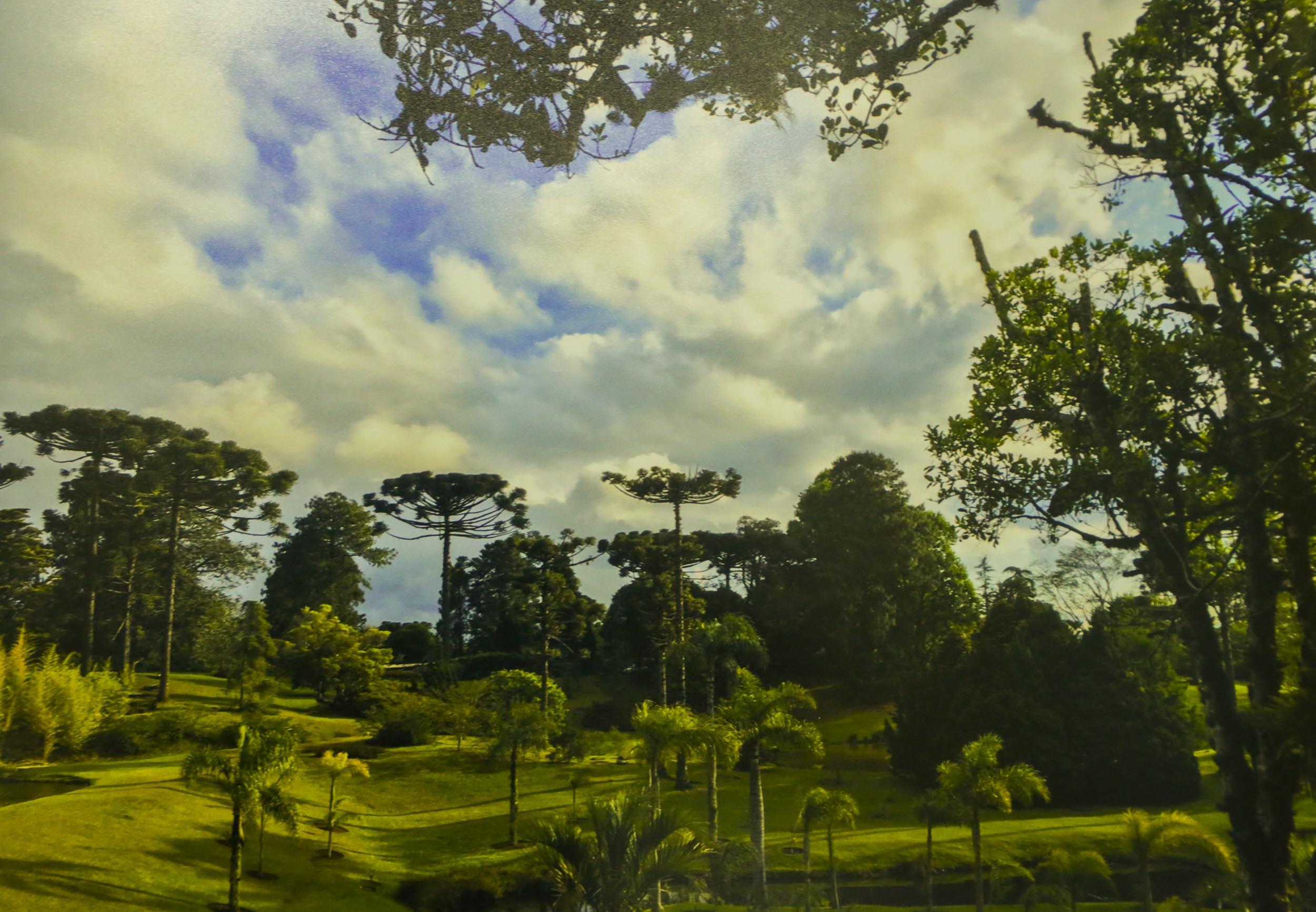 Exposição fotográfica retrata as belezas de Faxinal do Céu