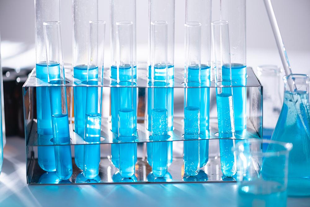 Biotecnologia seleciona para especialização, mestrado e doutorado