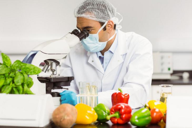 Mestrado em Engenharia de Alimentos abre processo seletivo