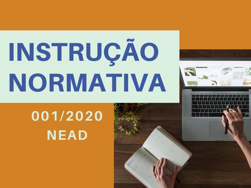 NEAD elabora instrução normativa para professores da UEM ofertarem cursos de extensão em parceria com o Núcleo